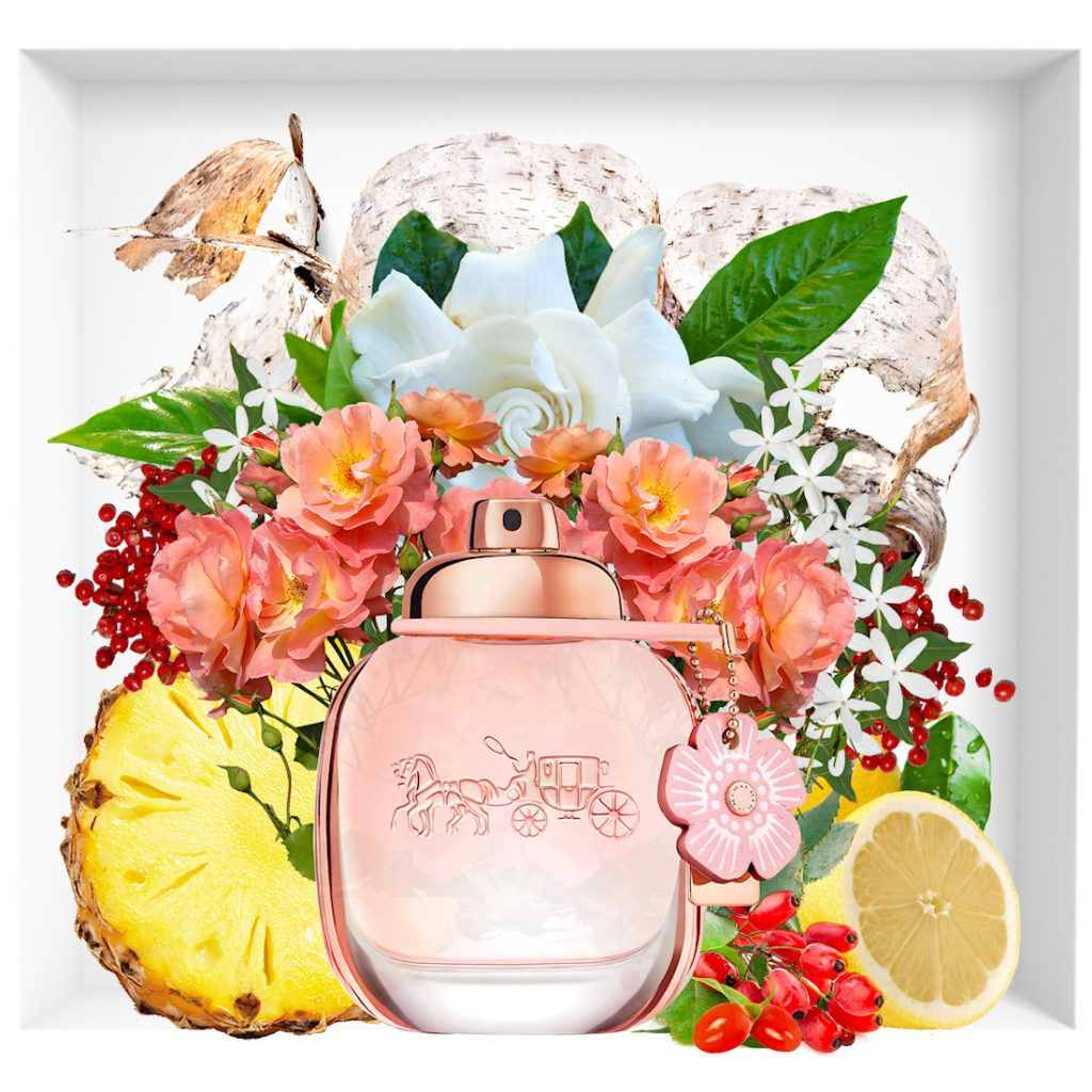 New Flowery Coach Floral Blush Coach Floral Perfume Scents Fragrance Design