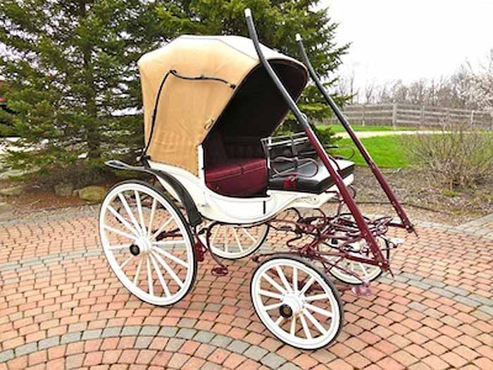 carriage+ponies+for+sale | Carriage Driving Carriages for