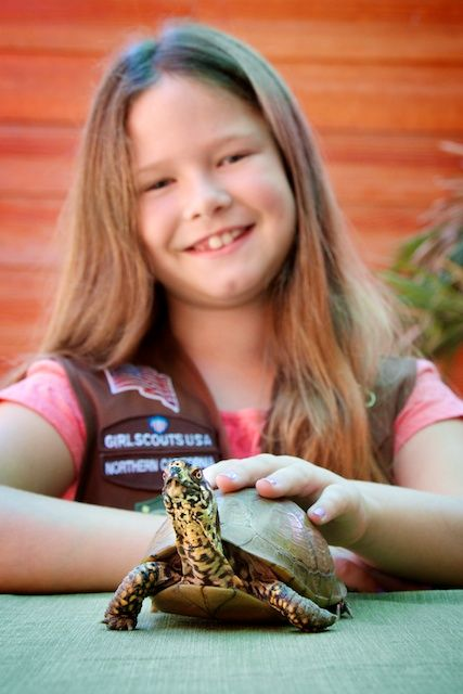 Happy Hollow Park and Zoo :: New Girl Scout Programs at Happy Hollow Zoo!