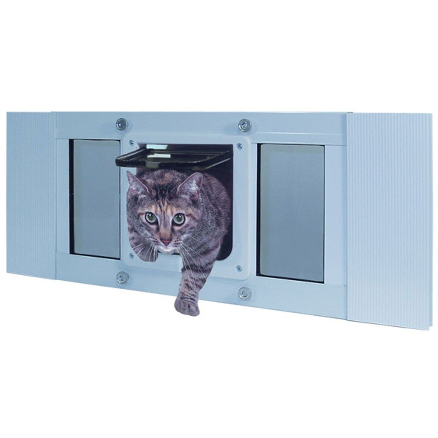 s coffee home size flap m window door store magnetic small lockable com for cat cottage safe product doors pet kitty animal screen aliexpress way white buy dog gate