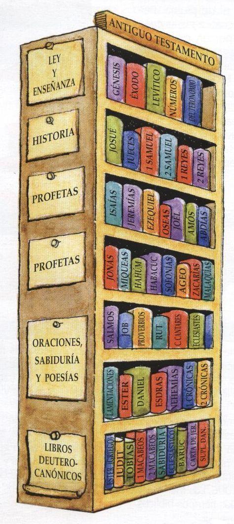 libros biblia catolica - Buscar con Google Catequesis Pinterest - fresh grupos de la tabla periodica unam
