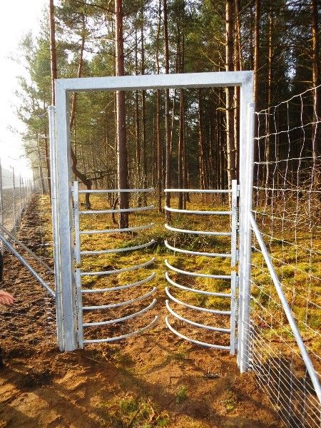 One Way Wildlife Gate Outdoor Structures Outdoor Gate