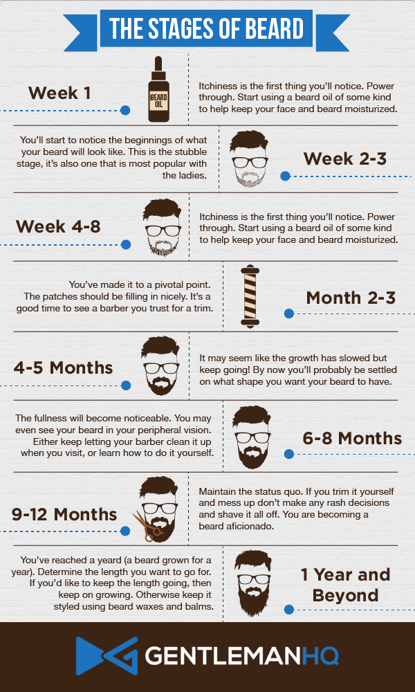 Stages of Growing A Beard [Infographic]