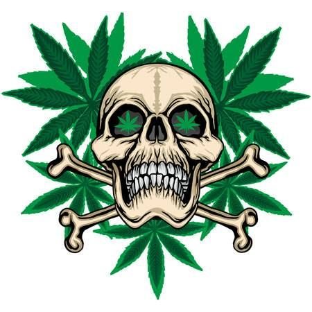 grunge skull coat of arms | Картинки с черепами, Обои с ...