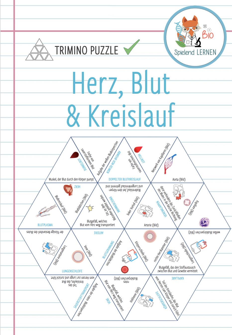 Herz, Blut und Kreislauf – Trimino Puzzle – Unterrichtsmaterial im ...