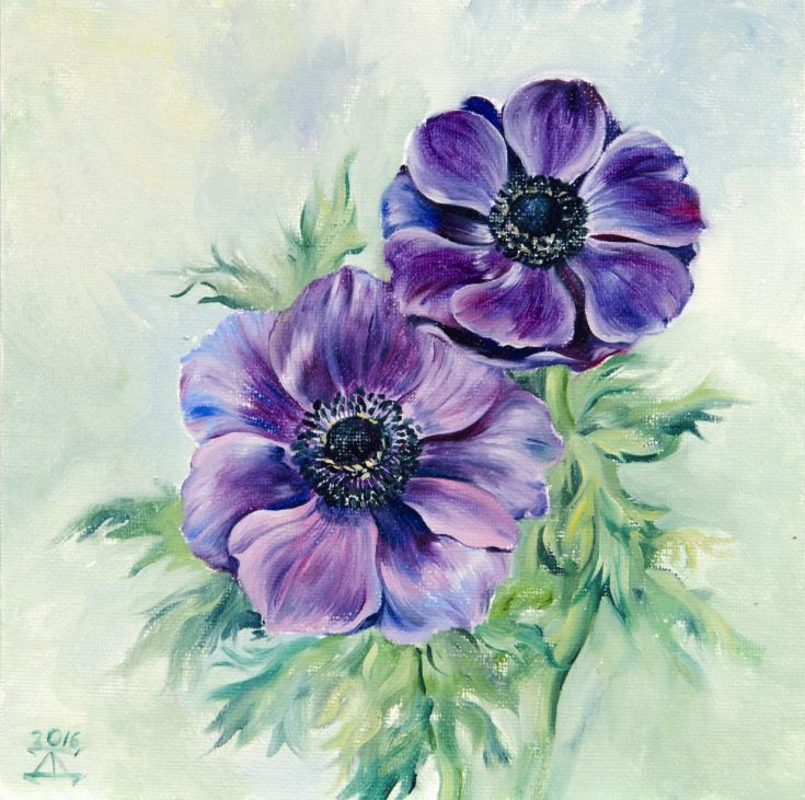 Anemone Flower 2016 Oil Painting By Daria Galinski In 2020 Painting Hand Painting Art Anemone Flower