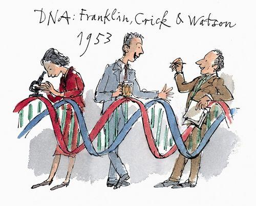 Francis Crick James Watson And Rosalind Franklin By Quentin Blake C 2009 Rosalind Franklin Quentin Blake James Watson