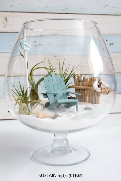 Diy Beachy Air Plant Terrarium Fairy Garden Pinterest Jardim