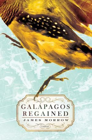 The best books of 2015 so far, and it's only just begun.: Galapagos Regained by James Morrow