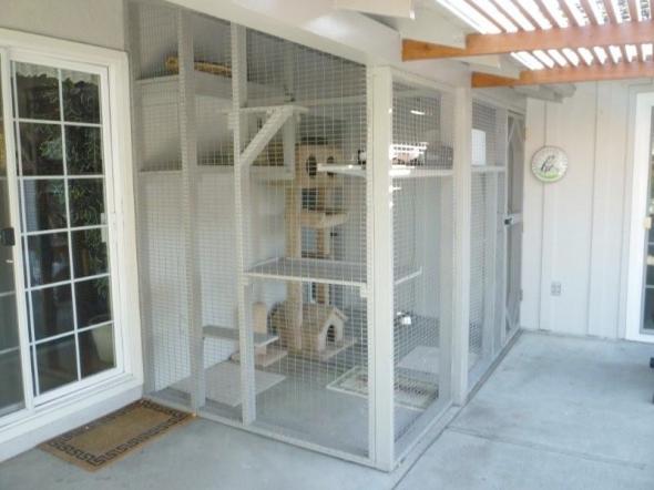Bulding An Indoor Cat Enclosure Figure 3 4 Constructed