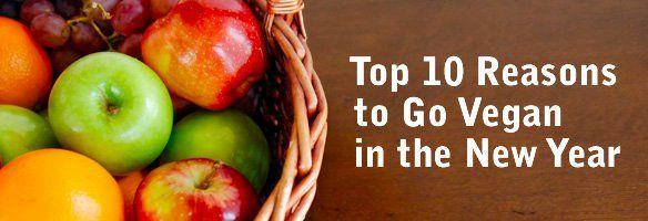 Top 10 #Reasons to Go Vegan  #govegan #compassion  http://www.peta.org/living/food/top-10-reasons-go-vegan-new-year/  http://www.peta.org/living/food/top-10-reasons-go-vegan-new-year/