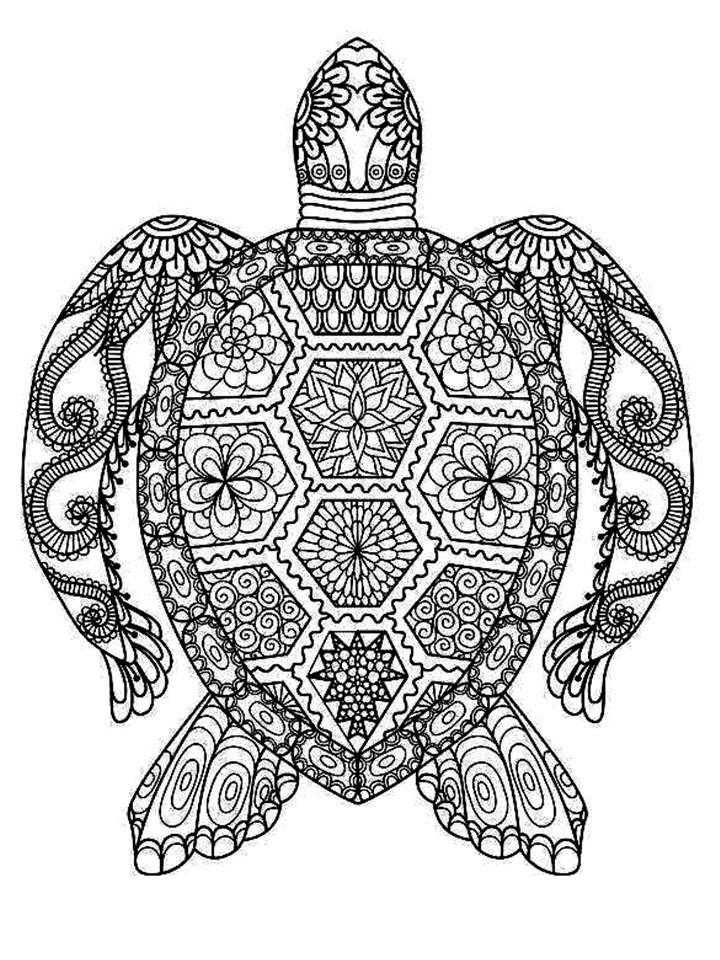 Turtle Mandala Turtle Coloring Pages Printable Stencil