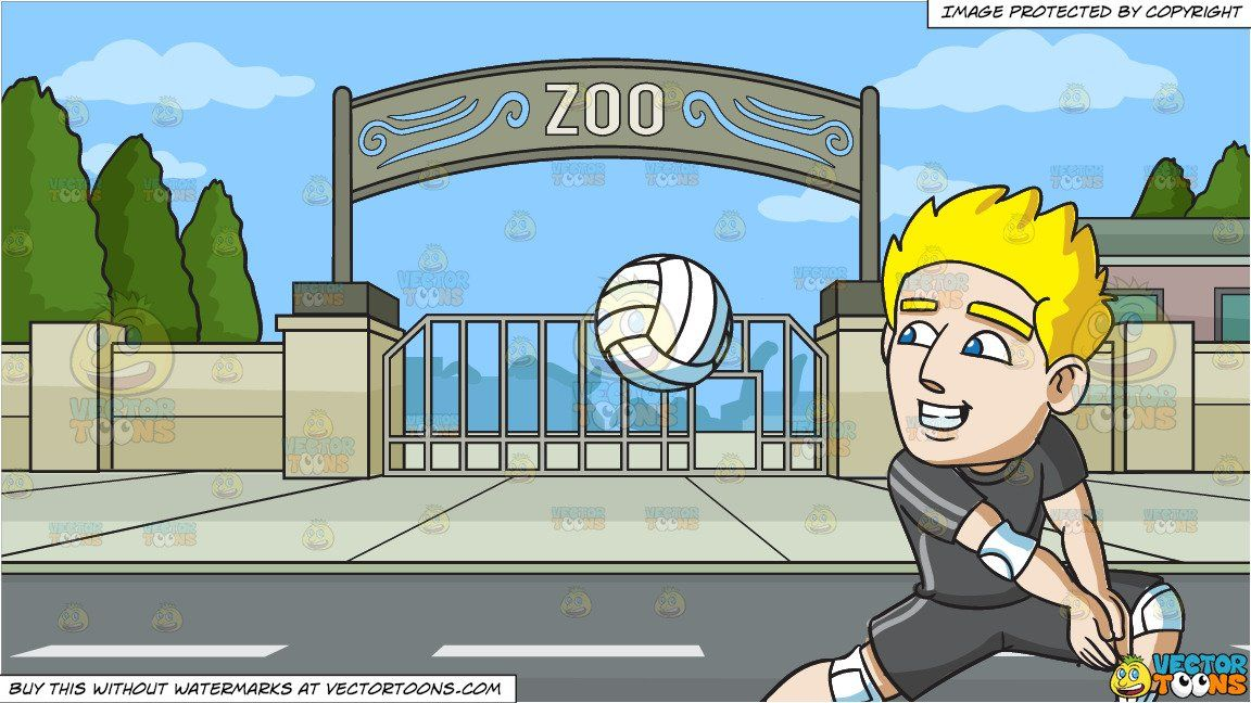 A Male Volleyball Player Preparing For A Forearm Pass And Zoo Entrance Background Vendor Vectortoon Type Clipart Price 20 0 Entrance City Zoo Beige Walls