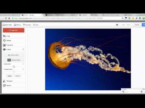 A free image editor built into Google+ and Picasa Web Albums called Creative Kit.- With an English accent I might add, enjoyable way to learn!    Find more videos at http://www.basicwebtips.com & http://facebook.com/internetmarketingresource