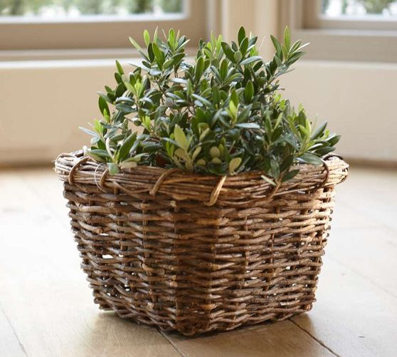pottery barn baskets | Vineyard Baskets | Pottery Barn