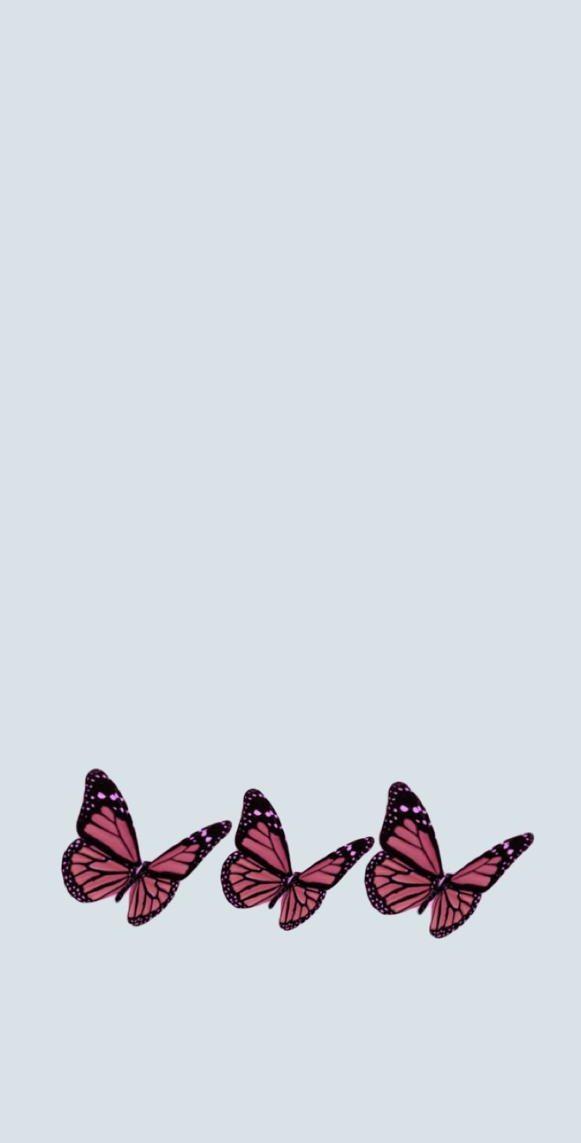 Pink Butterfly S With Light Blue Background Wallpapers
