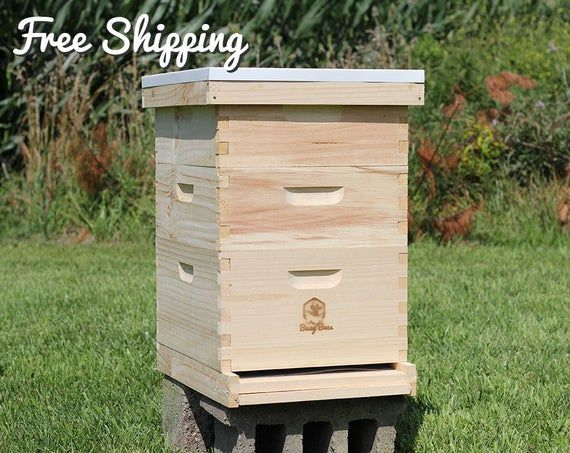 Bee Hive 10 Frame Langstroth 1 Deep Brood 2 Medium Super Boxes Includes Frames Foundations In 2020 Bee Keeping Bee Hive Bee Boxes