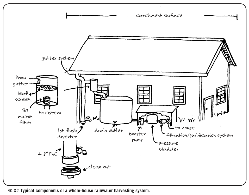Free Your Water: Fundamentals of a Rainwater Harvesting