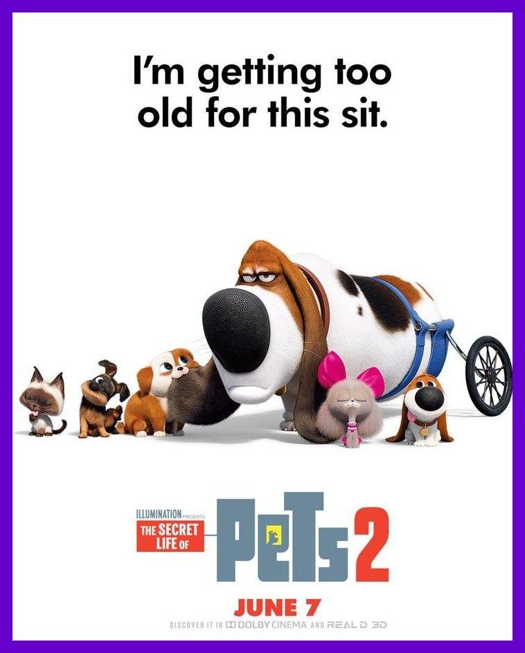Dana Carvey Es 45dfe5fc5a9568 Secret Life Of Pets Secret Life Pets