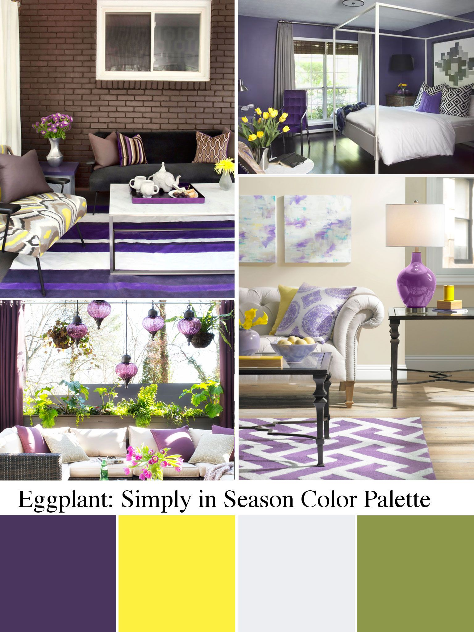 Eggplant color: shades and combination 92