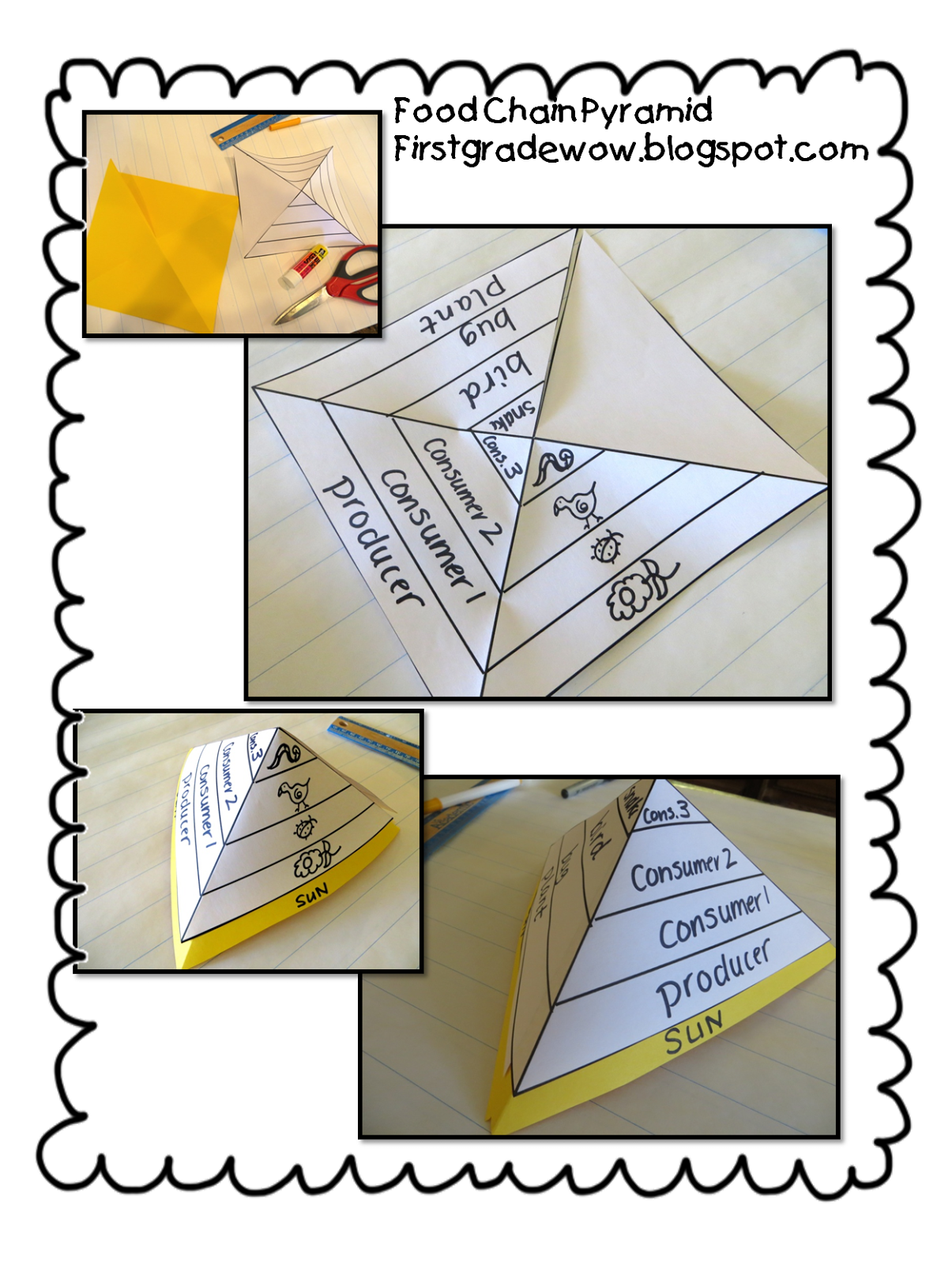 Worksheet Food Webs For Kindergarten Students first grade wow riding the food chain school stuff pinterest pyramid foldable dont need to buy unit students can create their own foldable