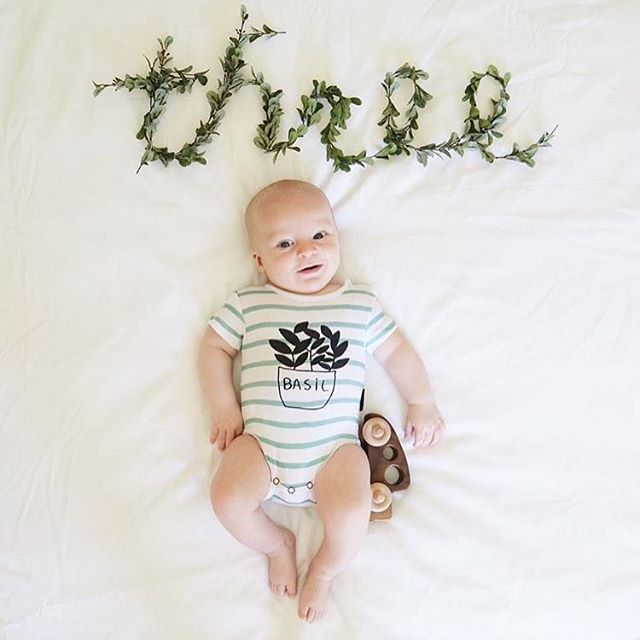 Basil Onesie Fin Vince Childflowerz Monthly Baby Photo Ideas For Boys Organic Baby Boy Clothes Monthly Baby Pictures Monthly Baby Photos One Month Baby