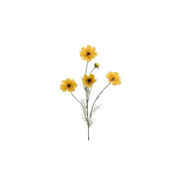 Pin By Megan Ann On Placas Para Instagram Flower Illustration Flower Drawing Trendy Flowers