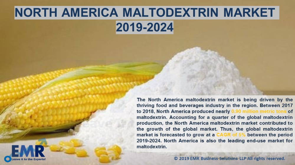 North America Maltodextrin Market By Application Food