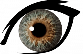 500 Best Eyes Lense Png Full Hd Transparent Images In 2020 Eyes Clipart Light Background Images Png Images
