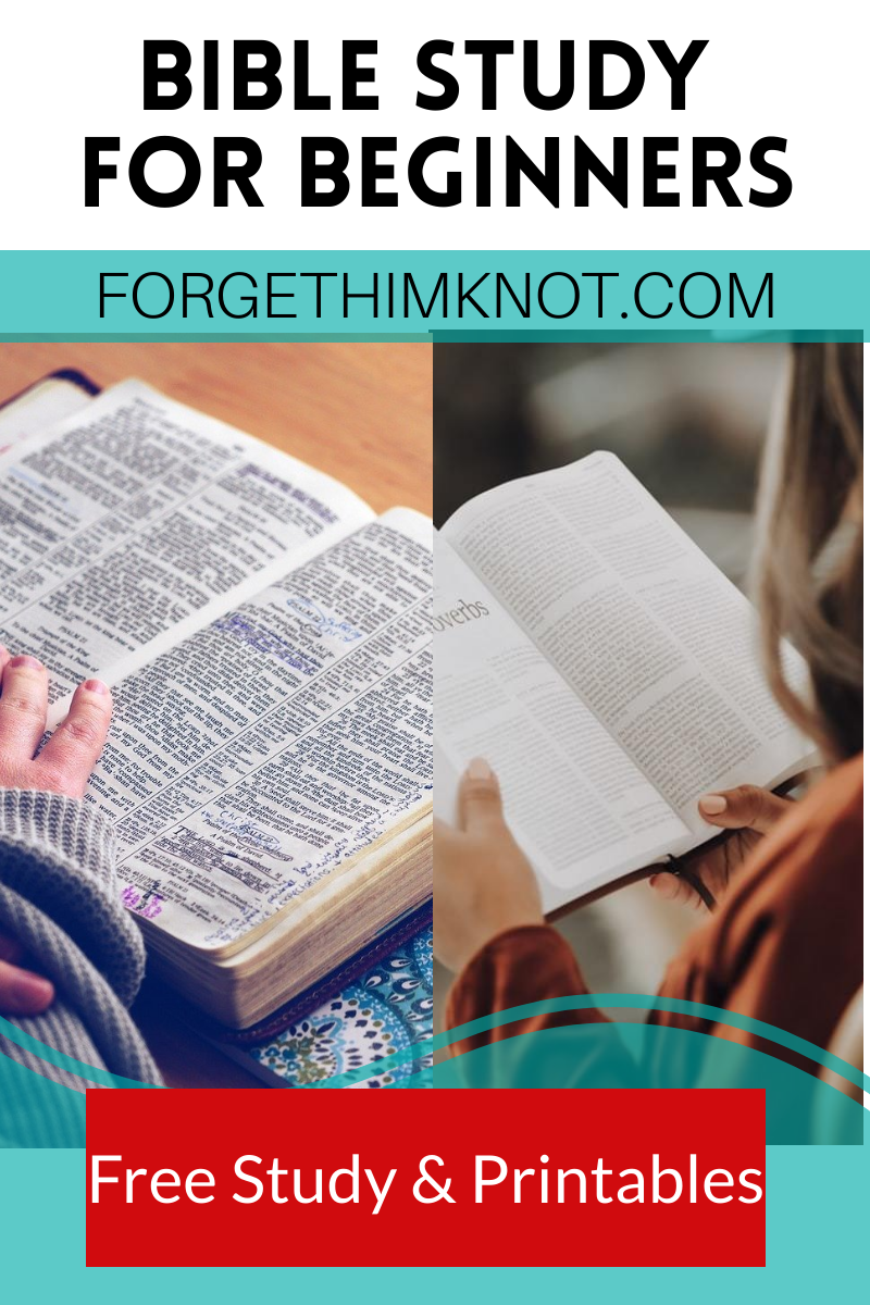 Bible Study For Beginners Plus A Free Bible Lesson Forget Him Knot Bible Lessons Family Bible Study Plans Family Bible Study