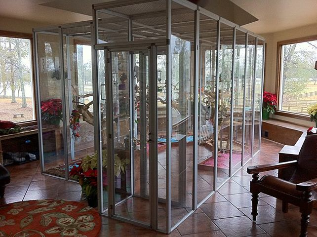 I Want To Make A Rat Room With A Design Of A Very Clear Glass