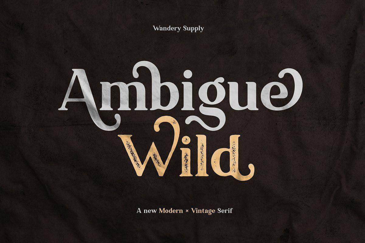 Ambigue Wild Modern X Vintage Serif In 2020 Modern Serif Fonts Serif Modern Fonts