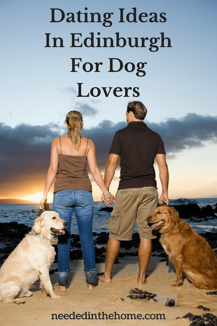 3 Great Dating Ideas In Edinburgh For Dog Lovers Hawaiian Dog Names Dog Names Dogs