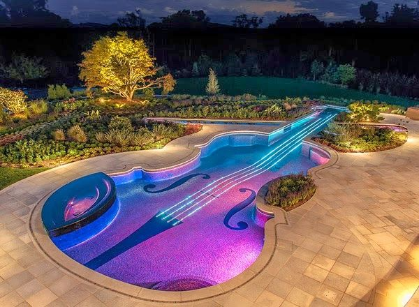 well not a full house just the swimming pool violin shaped swimming pool someone give