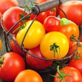 """Tomaten selber ziehen: Ein """"Tagebuch"""" von der Aussaat bis zur Pflanzung #tomatenpflanzen"""
