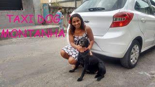 """TAXI DOG MONTANHA TRANSPORTE DE ANIMAIS NO RIO DE JANEIRO: REGINA e sua linda cadelinha """"Mel"""""""