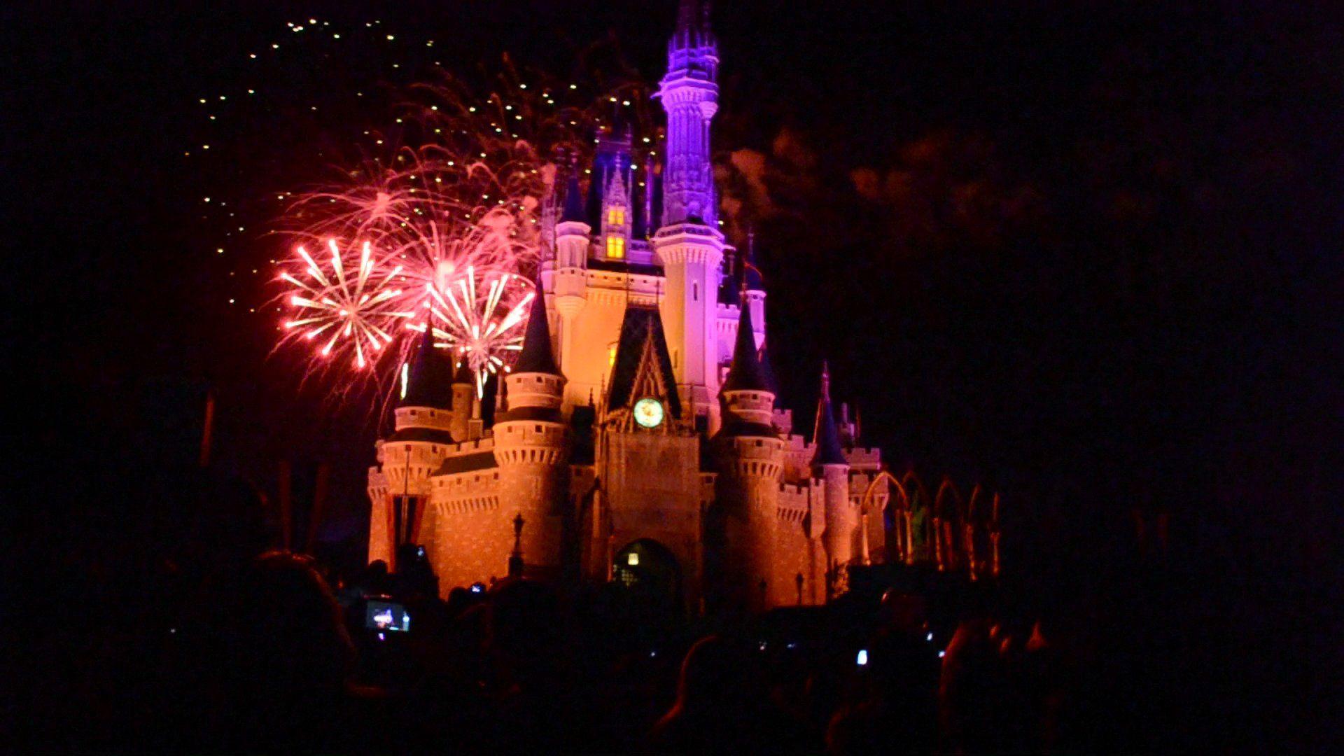 The Castle Magic Kingdom Fireworks Magic Kingdom Fireworks