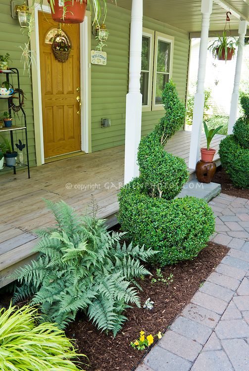 Small front porch garden with japanese painted fern swirl for Front porch landscaping plants
