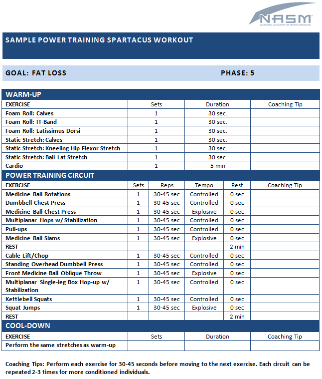 Sample Power Training Spartacus Workout | NASM Sample Exercise ...