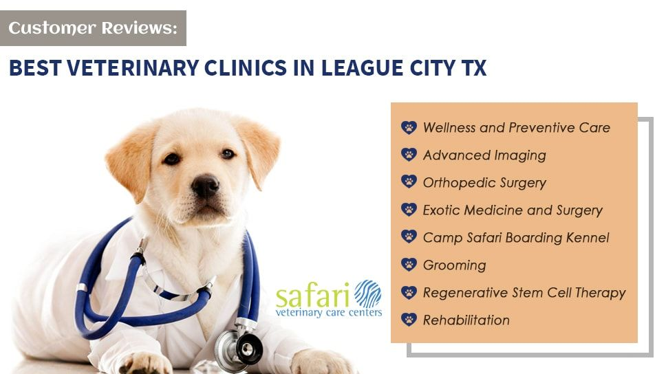 Customer Reviews One Of The Best Veterinary Clinics In League City Tx Veterinary Care Pet Insurance Pet Insurance Reviews