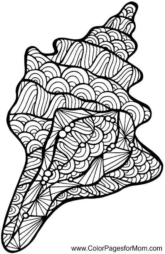 Pin von susan upton auf Shell art | Pinterest