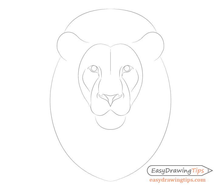 How To Draw Lion Face Head Step By Step Easydrawingtips Lion Drawing Simple Lion Face Drawing Drawing Face Shapes