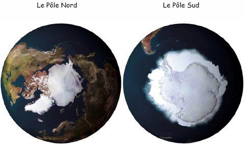 Projet aux pays du froid cycle 1 maternelle id es pour la classe mater maternelle cycle - Animaux pole nord ...