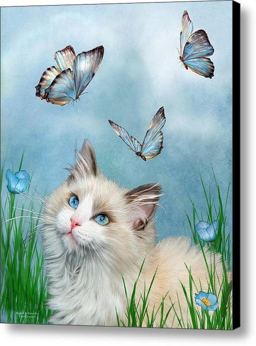 Ragdoll Kitty And Butterflies Canvas Print / Canvas Art By Carol Cavalaris