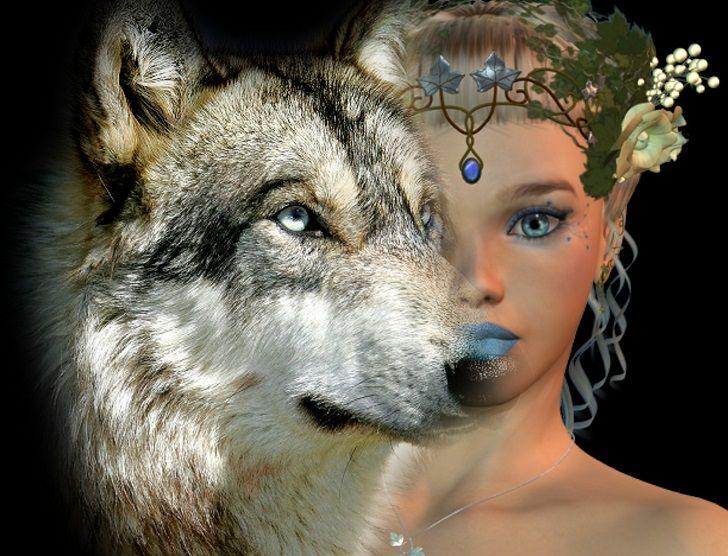 wolf shape shifter shapeshifter