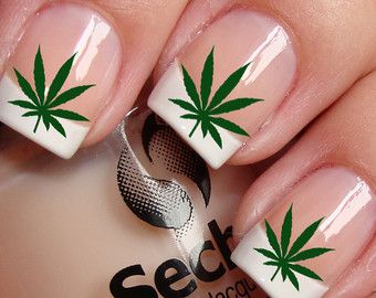 Pot Leaves Nail Art Ptg Waterslide Transfer Decals Leaf Decal Not Stickers Or Vinyl