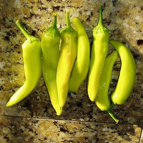 Hungarian Wax peppers. These are the hot version of sweet ...