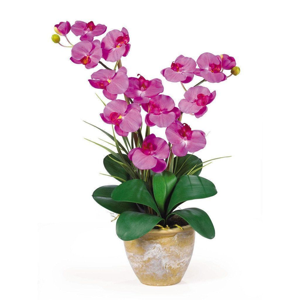 Double stem phalaenopsis silk orchid arrangement silk orchids and