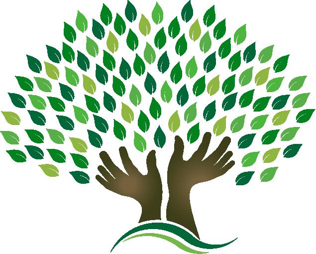 family tree design arvores em vetor pinterest family