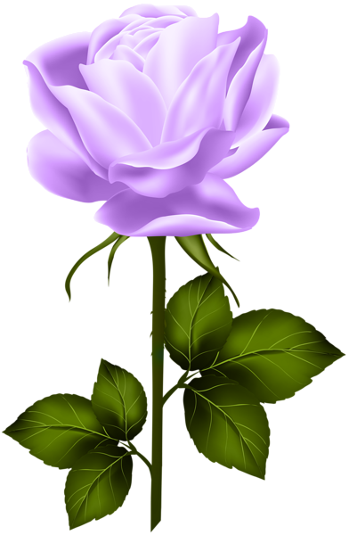 Purple Rose With Stem Png Clip Art Rose Flower Png Flower Clipart Flower Drawing